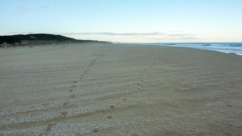 beach-near-sydenham-inlet