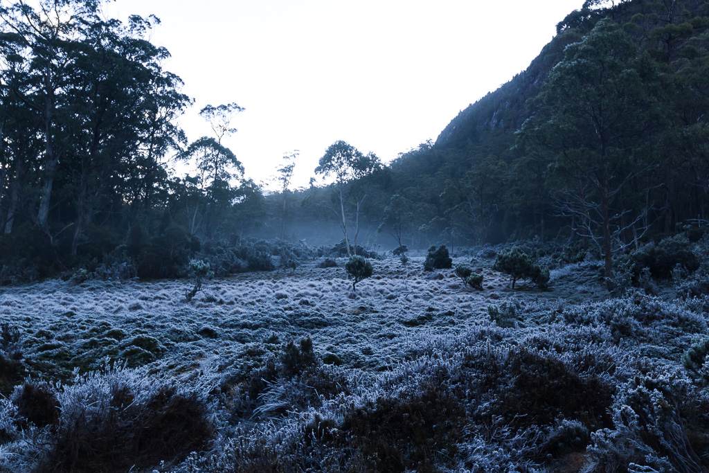 frozen-grass-never-never-tasmania