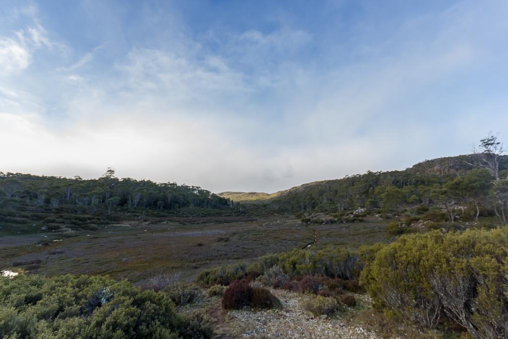 open-ground-near-lake-adelaide-tasmania