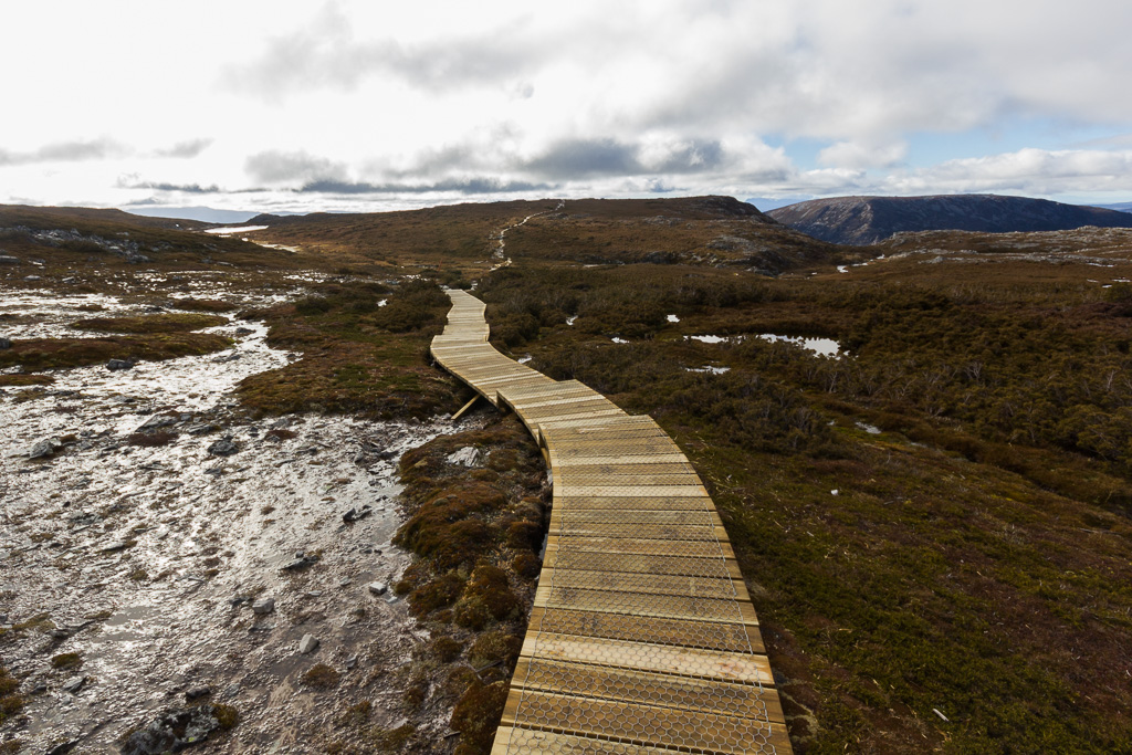 board-walk-near-cradle-mountain
