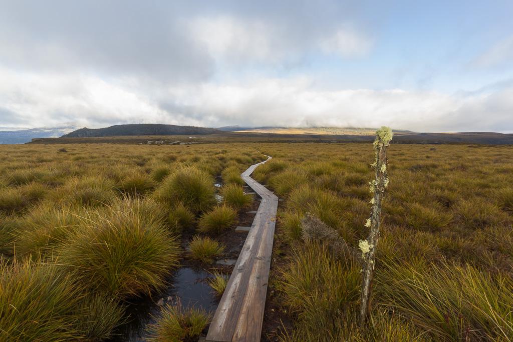 board-walk-overland-track