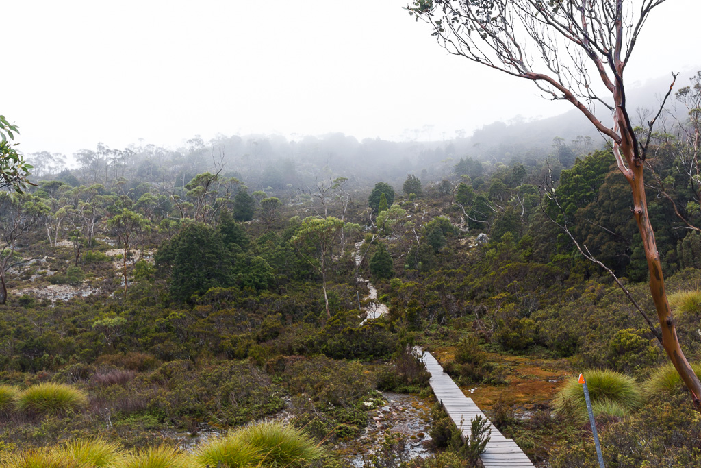 boardwalk-overland-track