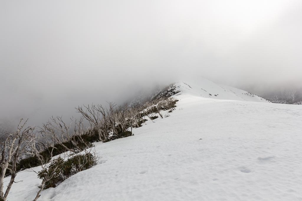 snow-razorback-spur