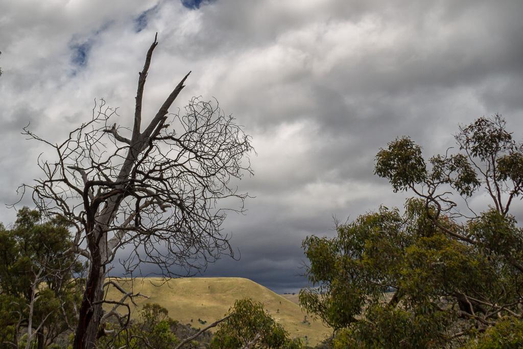 dark-clouds-over-island-werribee-gorge