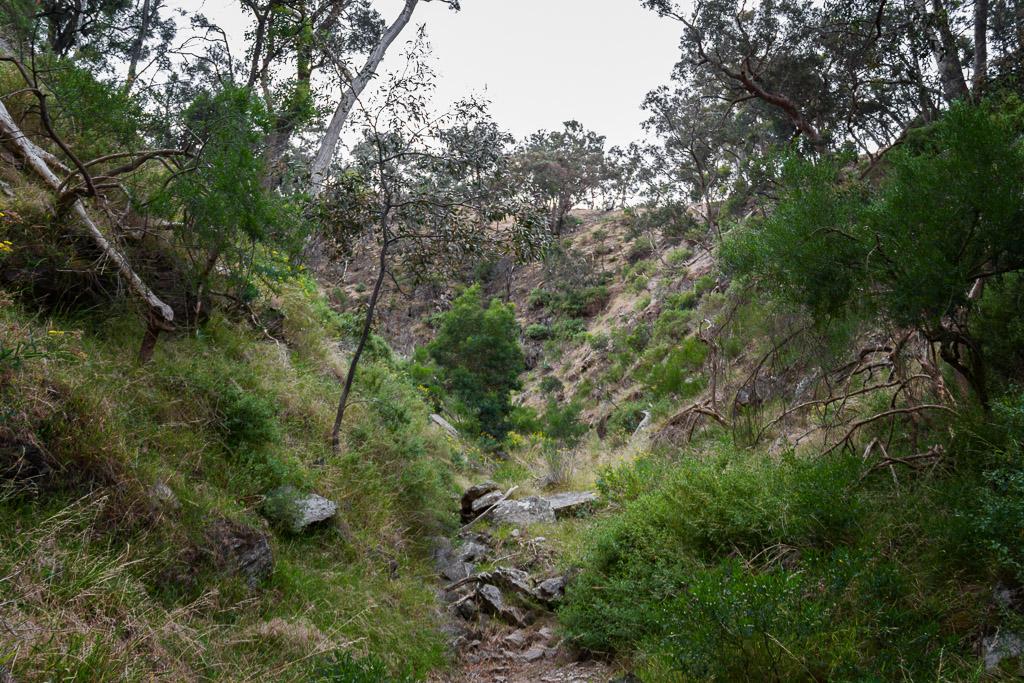 ironbark-gorge-werribee-gorge