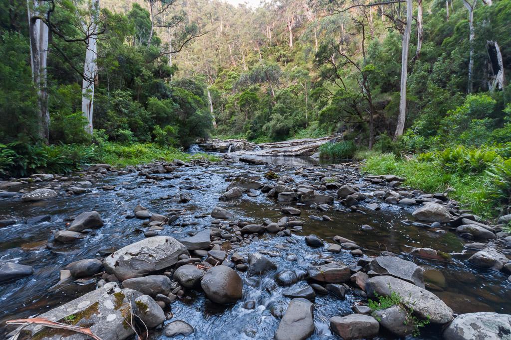 cumberland-river-otway-ranges
