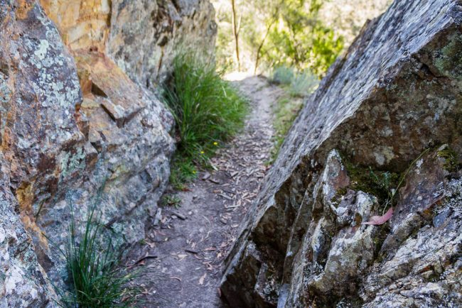 rock-wall-byers-track-lerderderg-gorge