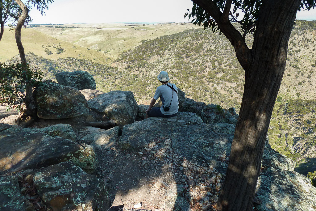sitting-under-tree-falcons-lookout-werribee-gorge