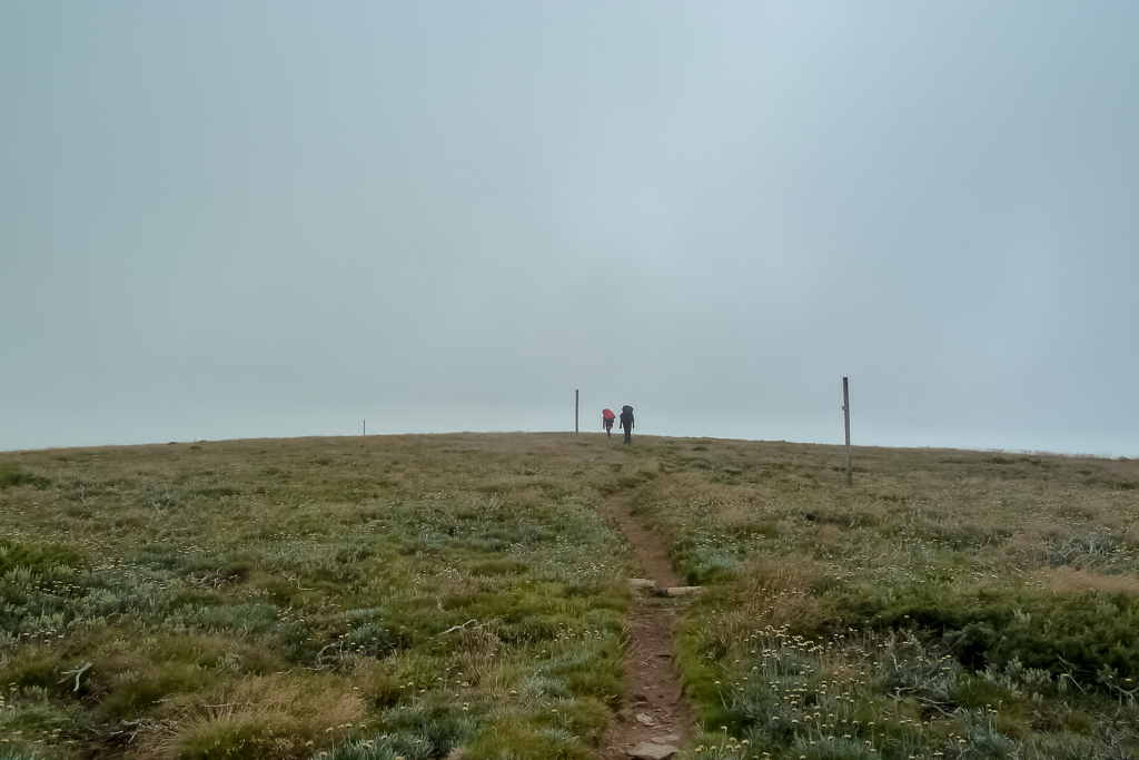 walking-track-cloud-mount-bogong