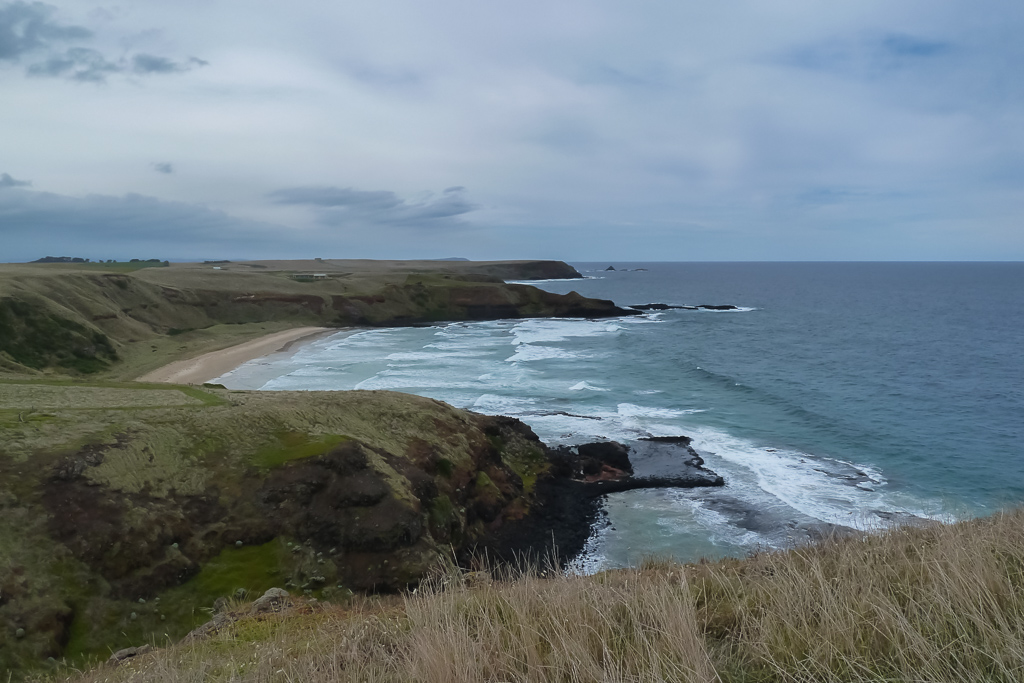 wild-dog-bluff-from-helens-head-phillip-island