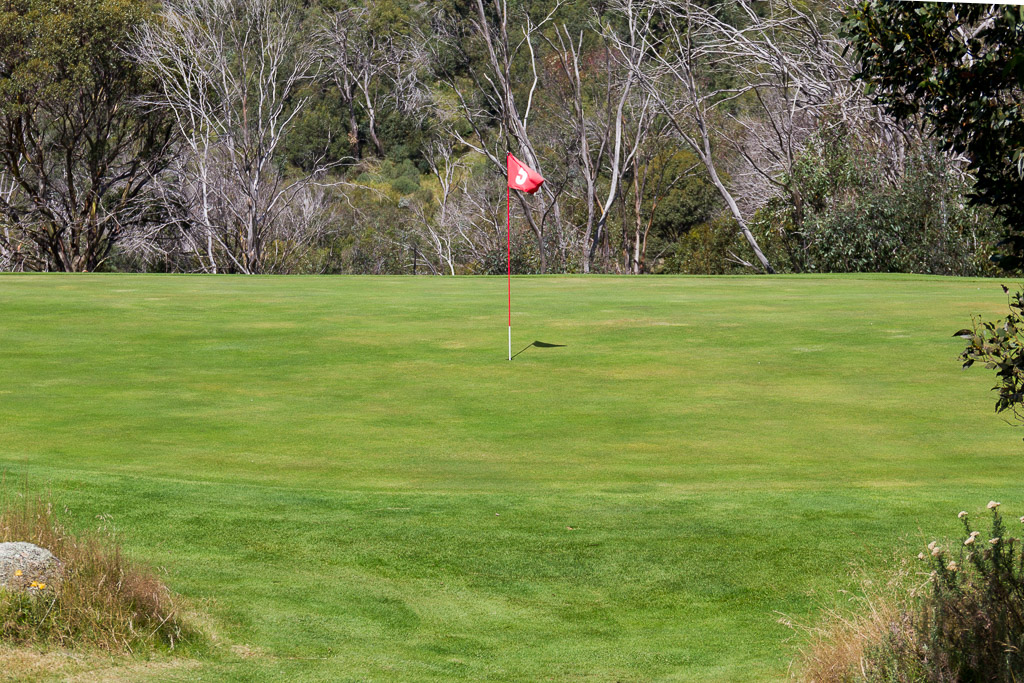 golf-green-near-thredbo