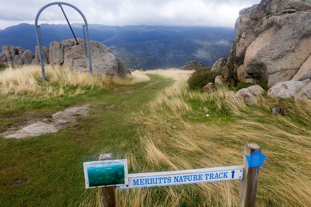 top-merritts-track-thredbo