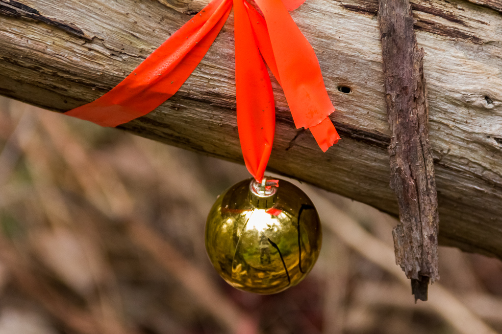 christmas-bauble-tied-to-tree