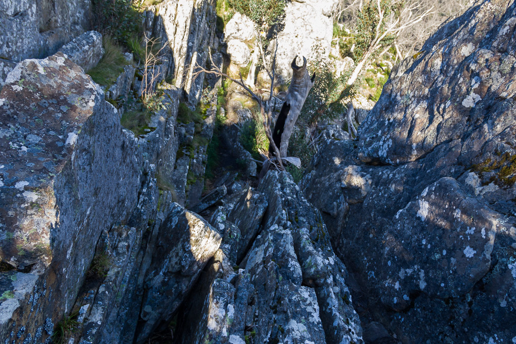 climbing-rock-slabs-canyon-track-cathedral-ranges