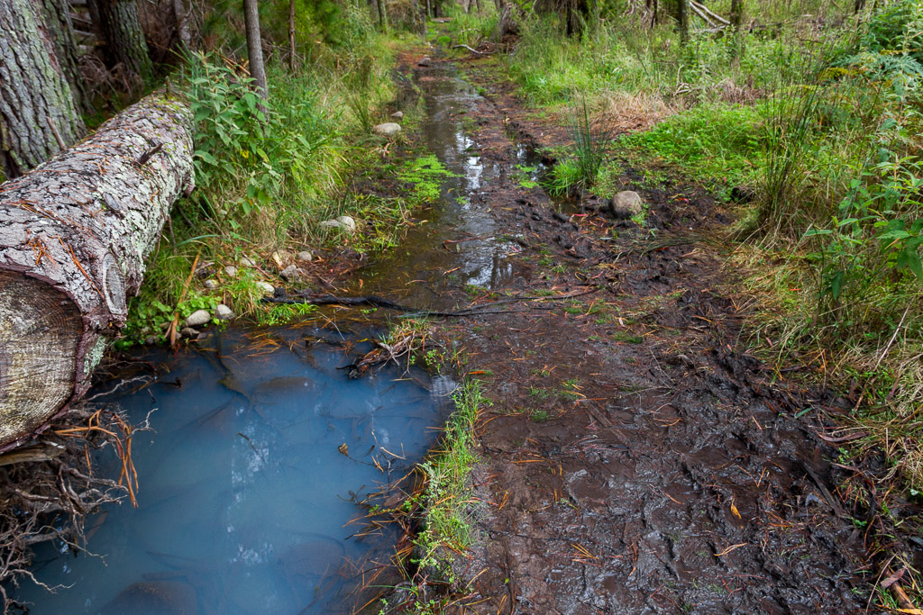 mud-on-little-river-track-cathedral-range