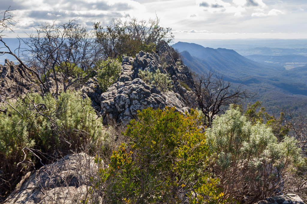 razorback-ridge-from-sugarloaf-peak-cathedral-ranges