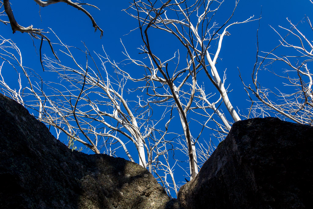 rocks-trees-blue-sky