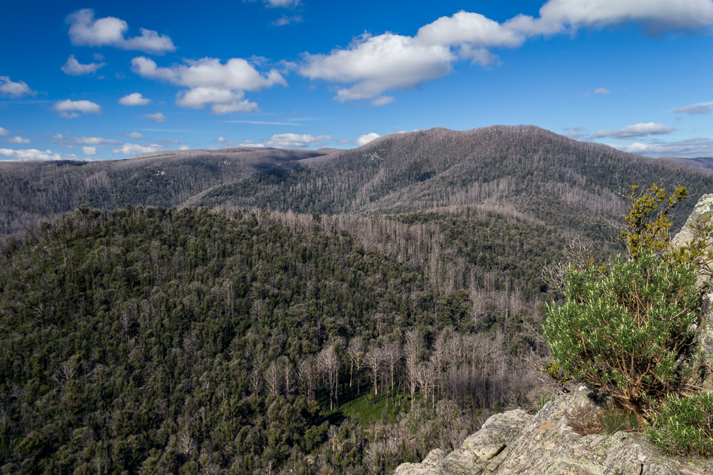 view-top-sugarloaf-peak-cathedral-ranges