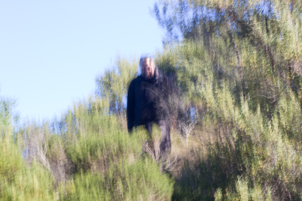 blurry-photo-person-in-trees