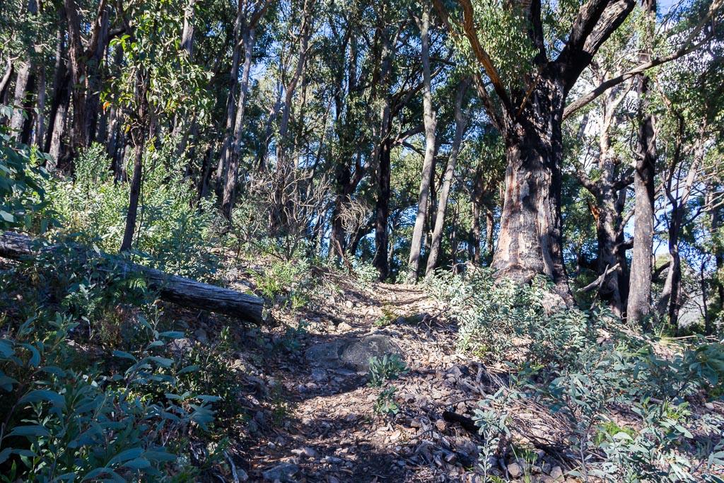 climbing-gillios-track