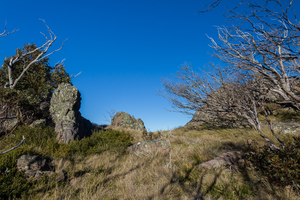 gap-hill-mount-wellington-track-victoria-alpine