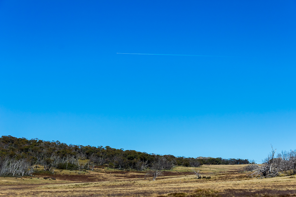 jet-contrail-above-wellington-plain-alpine