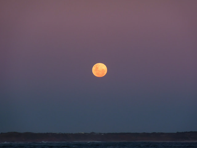 rising-moon-phillip-island