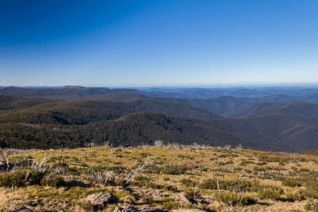 view-from-summit-mount-wellington-victoria-alpine