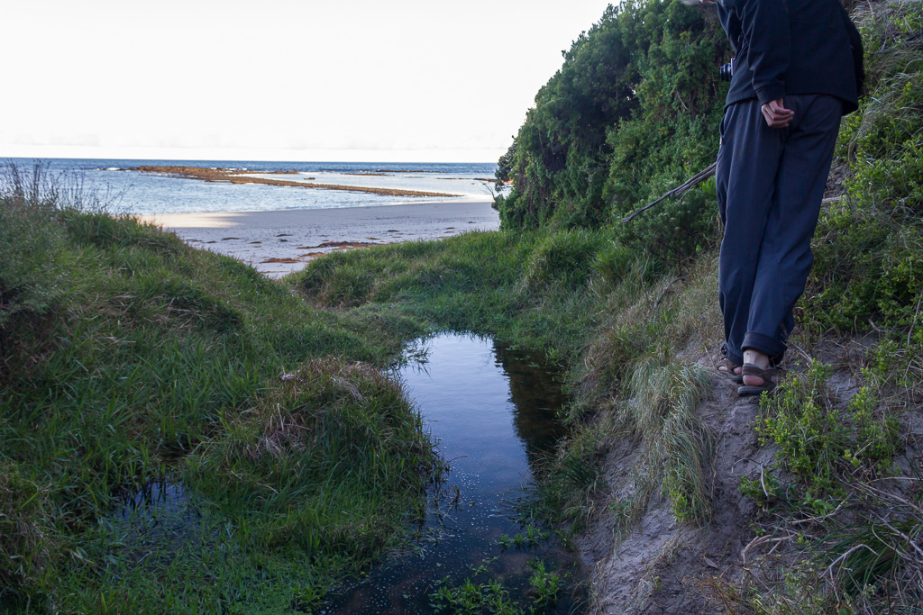 walking-on-embankment-flinders-beach