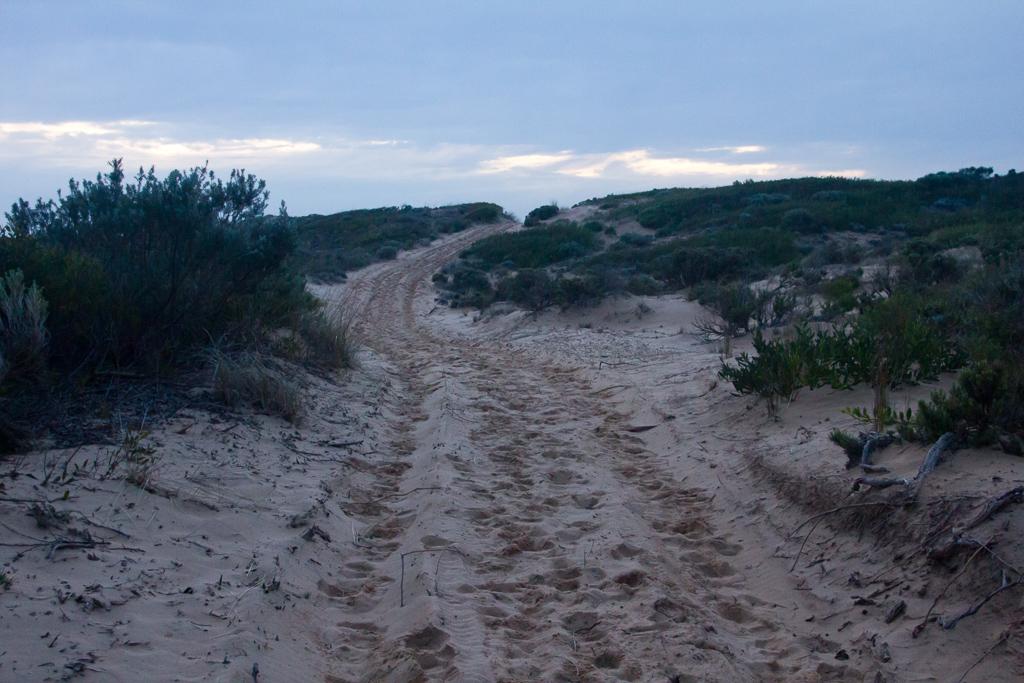 sand-track-cape-woolamai