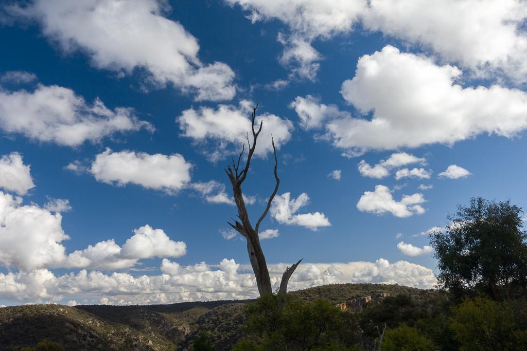 cumulus-clouds-over-werribee-gorge