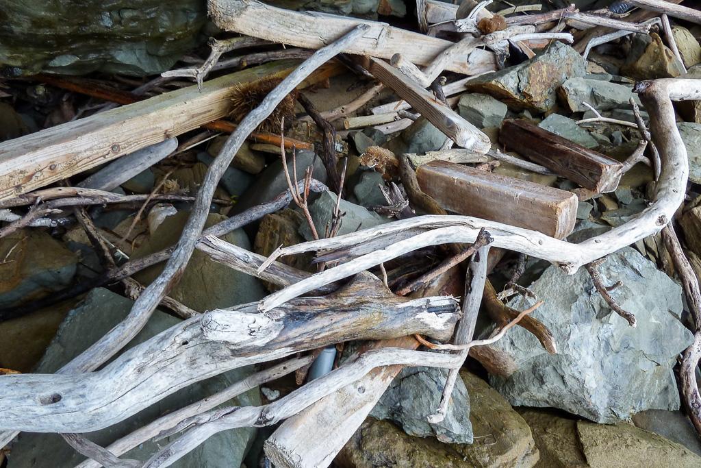 driftwood-on-rocks