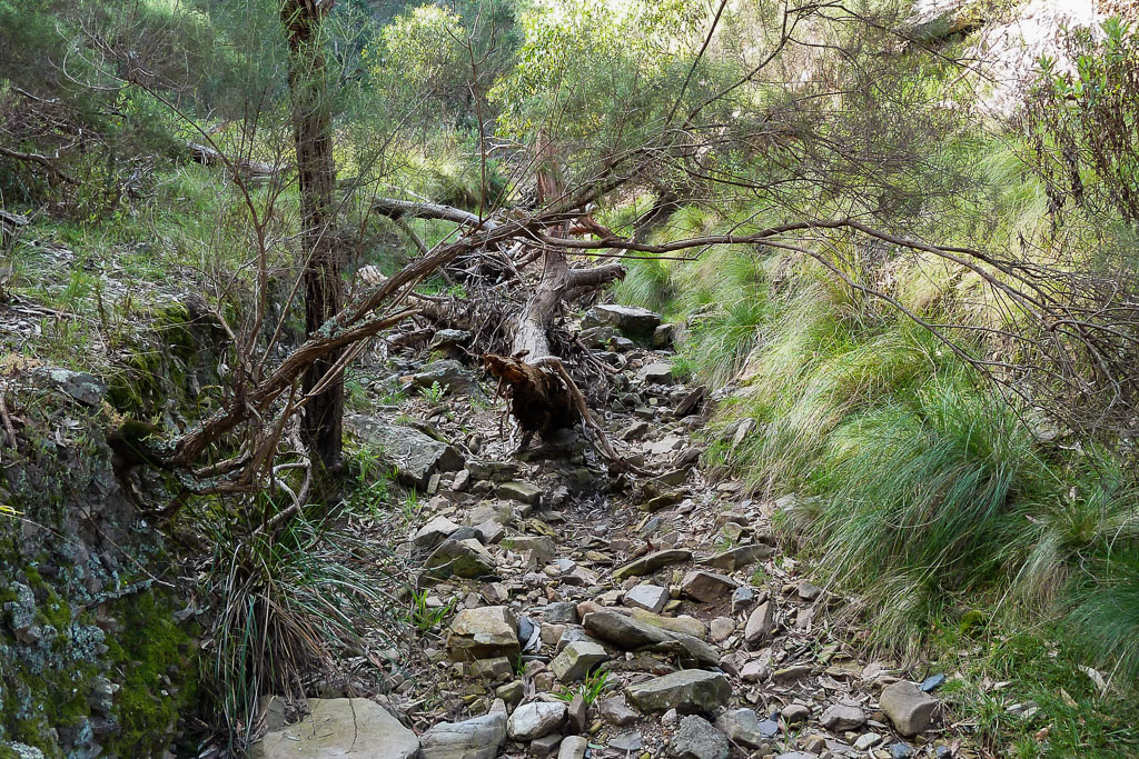 dry-creek-ingliston-gorge