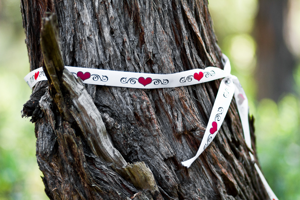 love-hearts-on-ribbon-tied-to-tree