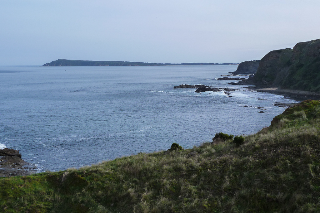phillip-island-from-george-bass-coastal-walk