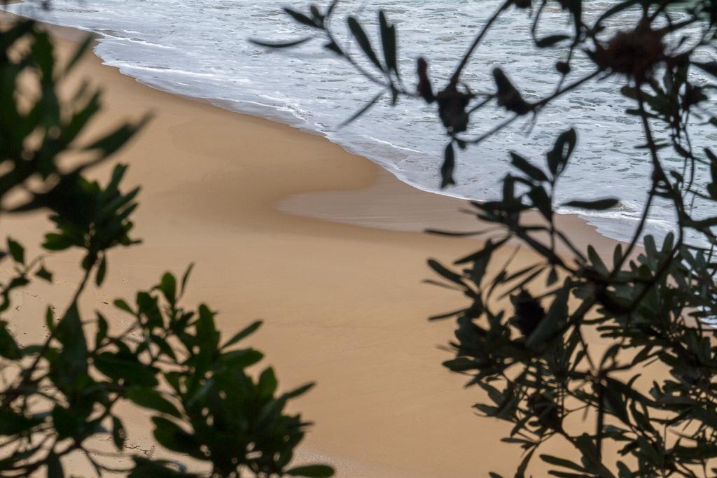 sand-on-half-moon-bay-victoria