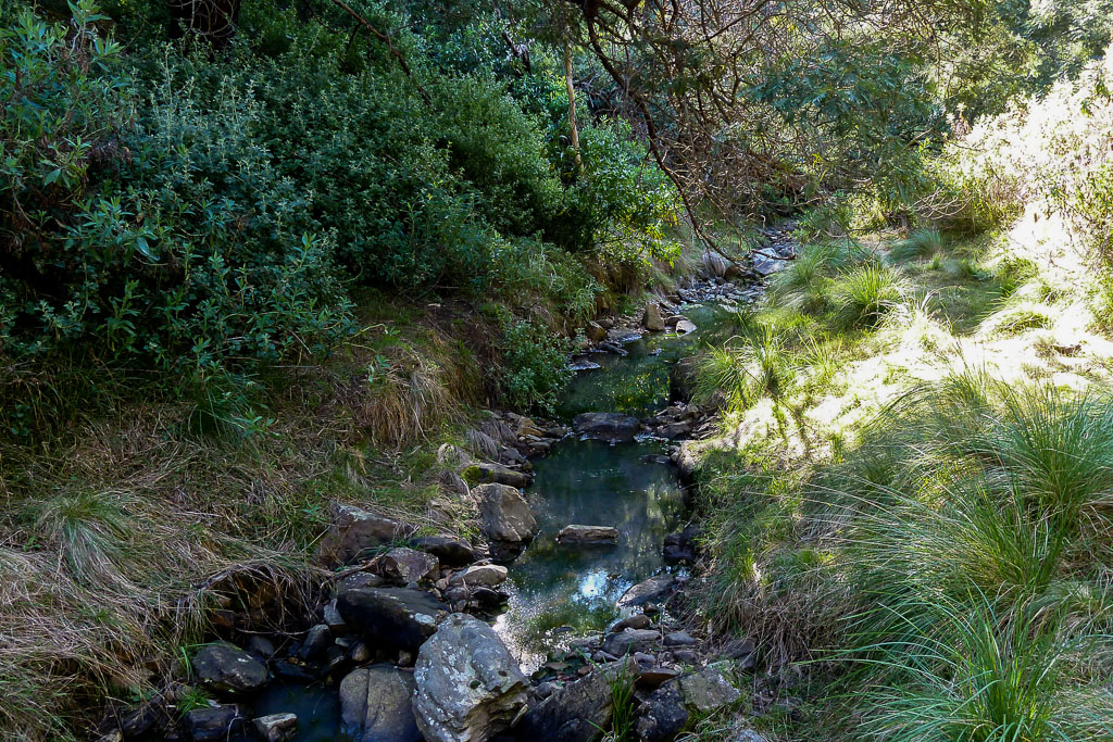 small-creek-water-ingliston-gorge