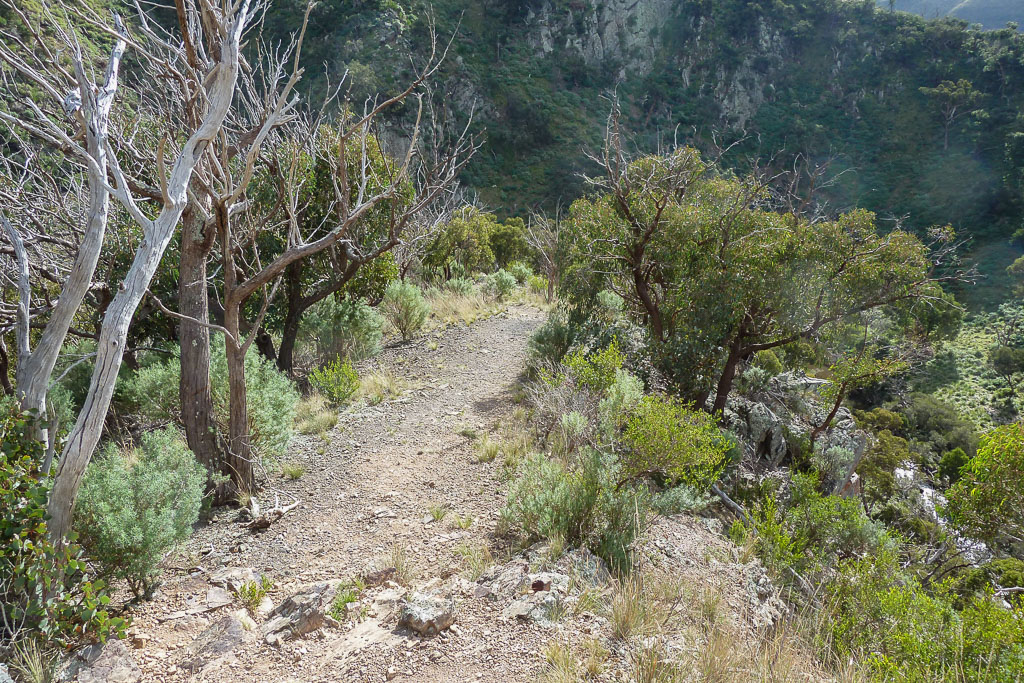 track-descent-werribee-gorge