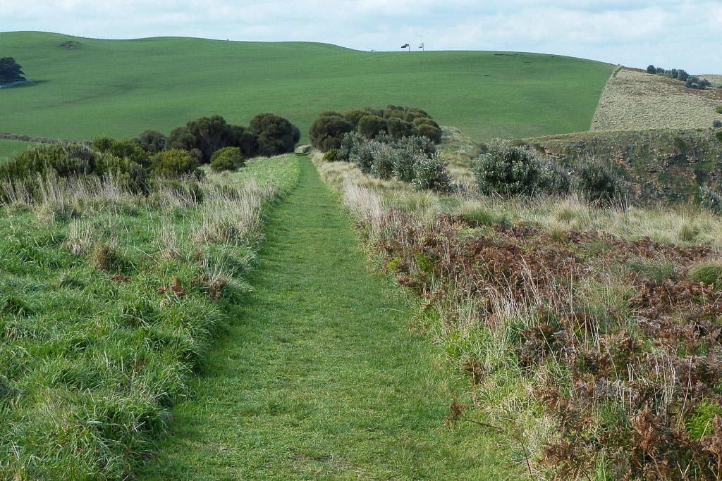 walking-track-george-bass-coastal-walk