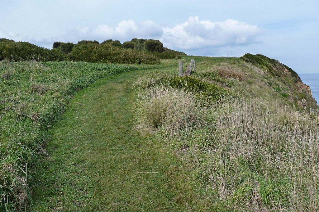 winding-track-george-bass-coastal-walk