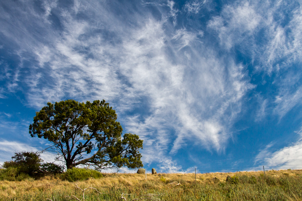 blue-sky-cirrus-clouds