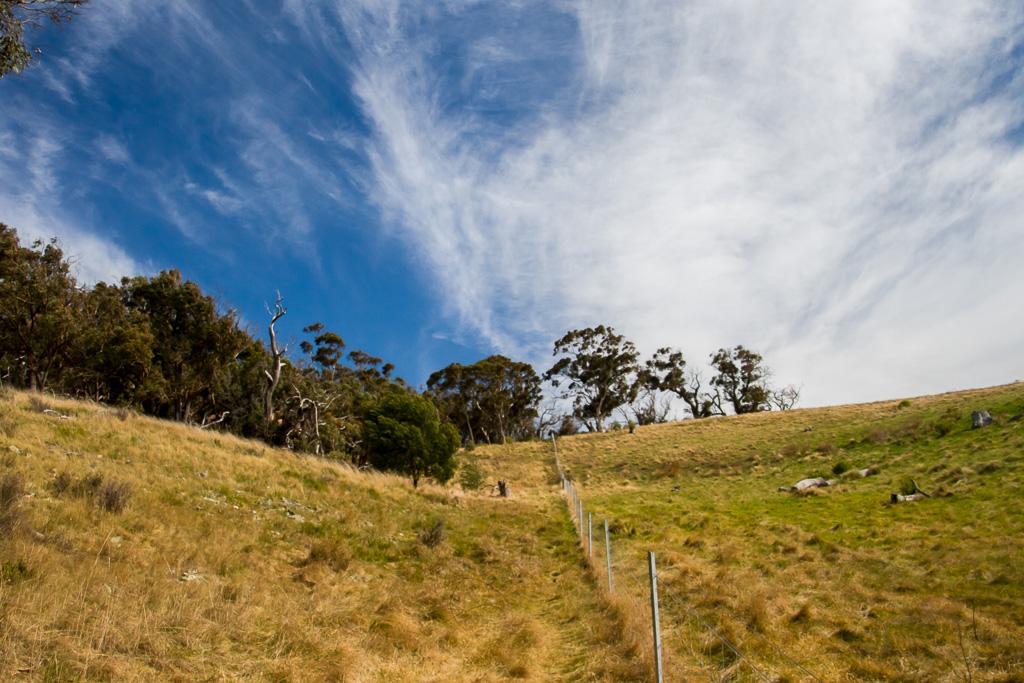 farm-fence-near-werribee-gorge