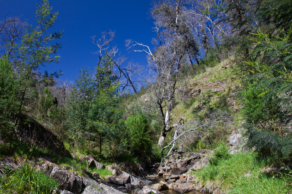 following-small-creek-above-diggers-gully-falls
