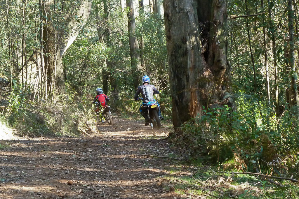motor-cycles-on-track-macedon-ranges