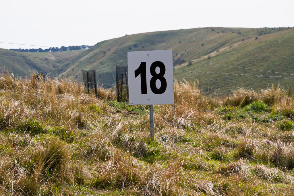 number-18-in-paddock-werribee-gorge