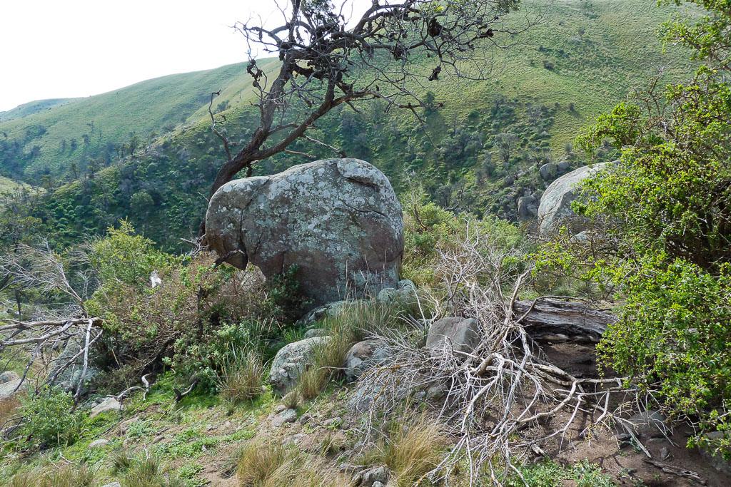 rock-at-the-granites-werribee-gorge