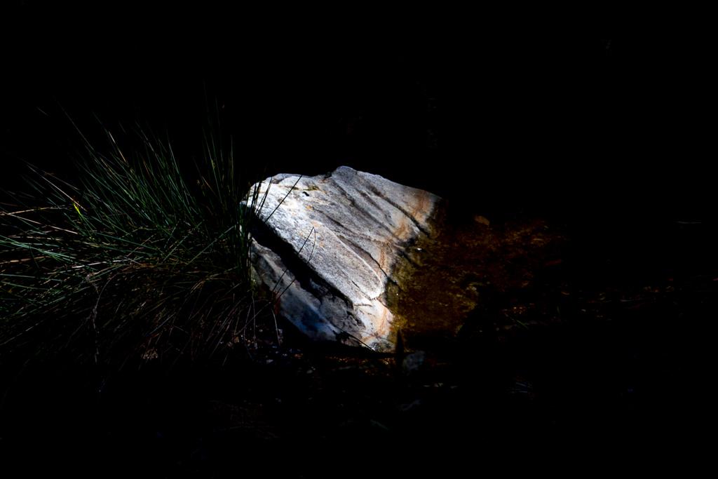 rock-lit-by-sunlight