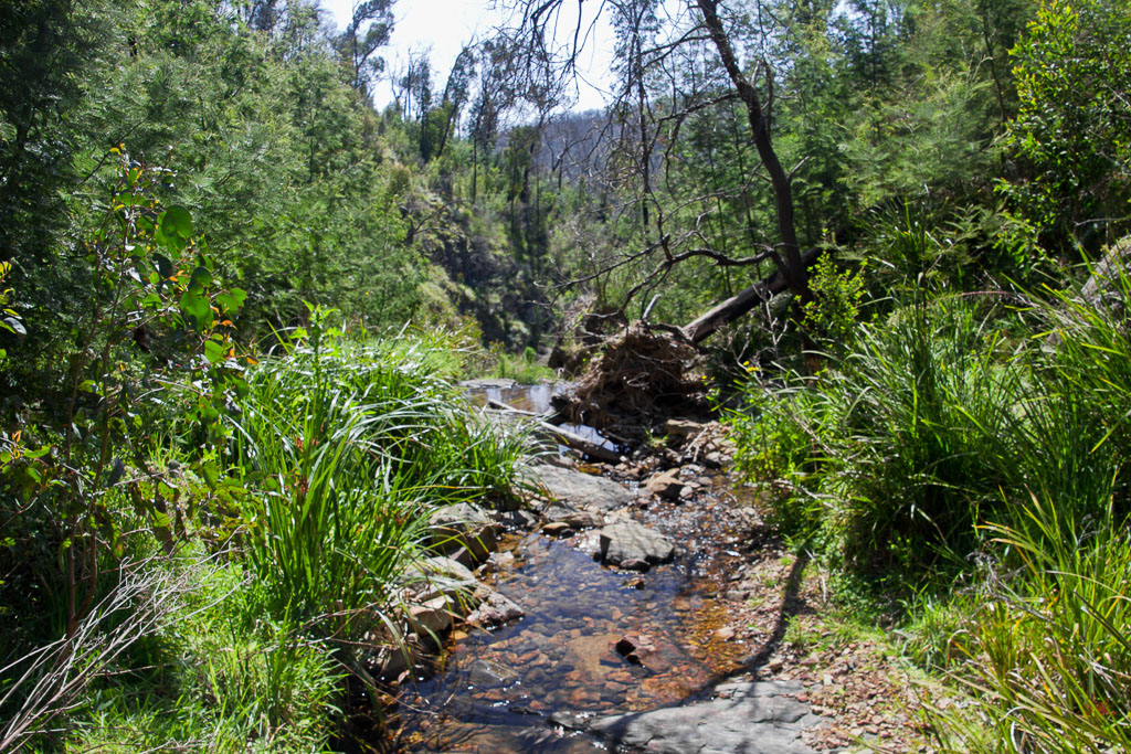 small-creek-above-diggers-gully-falls
