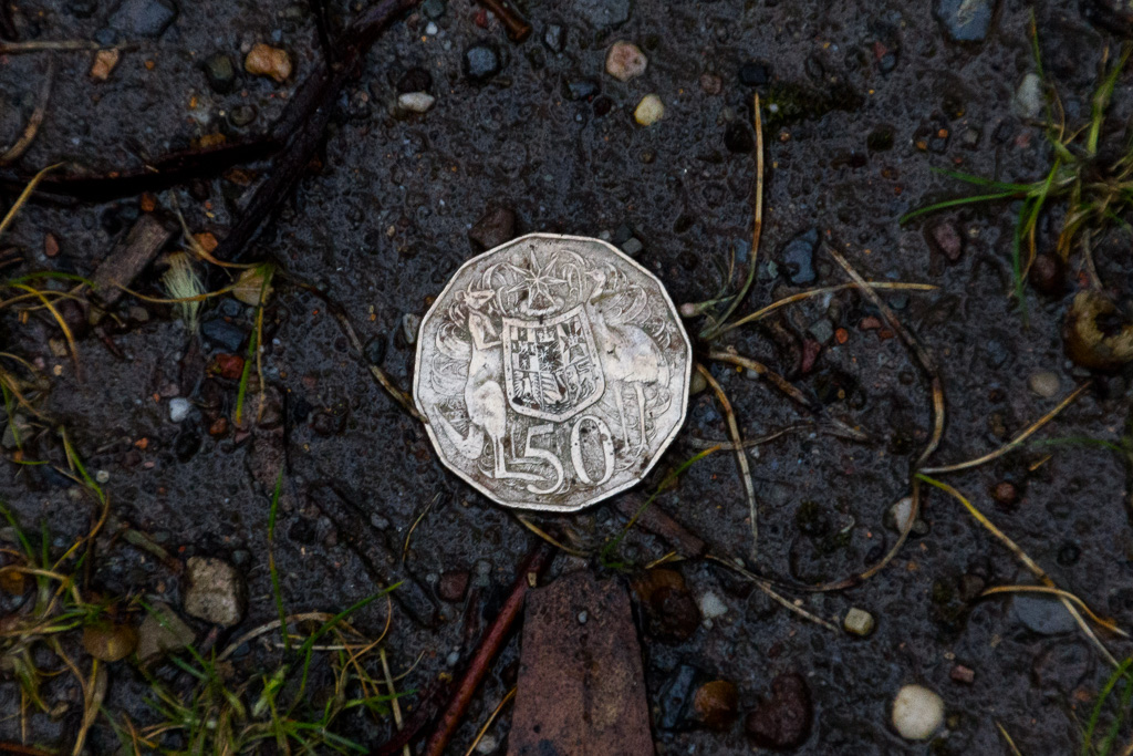 50-cent-coin-lying-on-ground