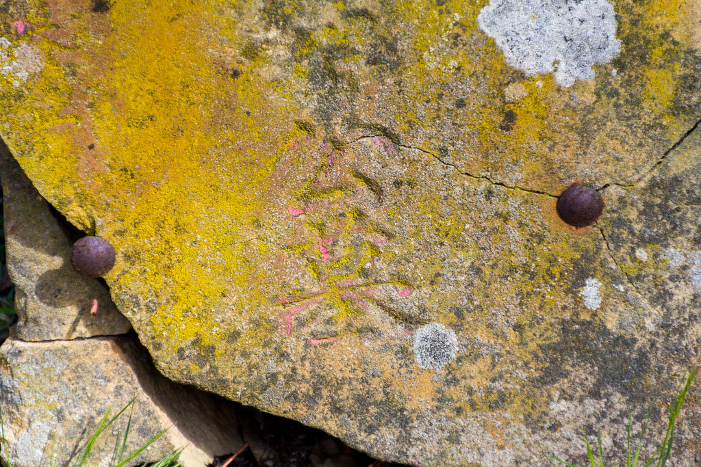 chinese-lettering-headstone-pennyweight-childrens-cemetery-castlemaine